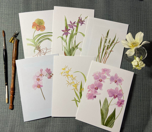 Orchid Notecard Assortment of 6