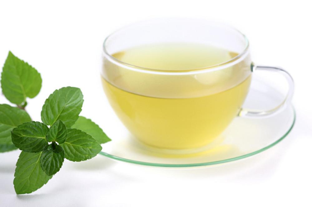 Healing Concepts Organic Peppermint Tea 40g