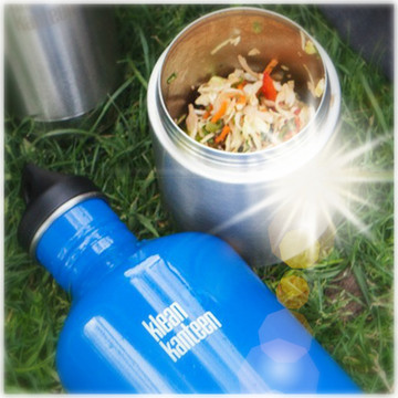 Stainless Steel Insulated Food Canister: 473ml (16oz)
