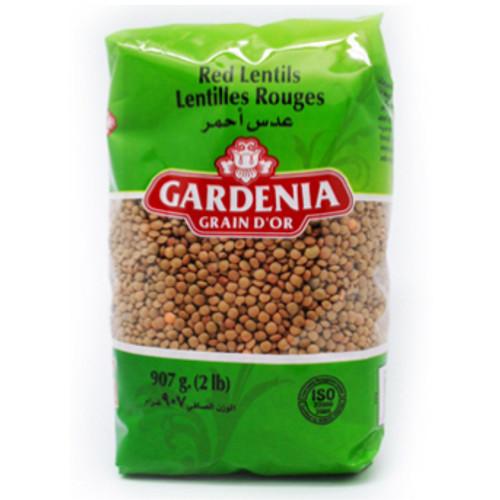 Lentil Brown - Gardenia - 12x907g