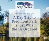 A Day Trip to Piedmont Park is Just What the Dr Ordered