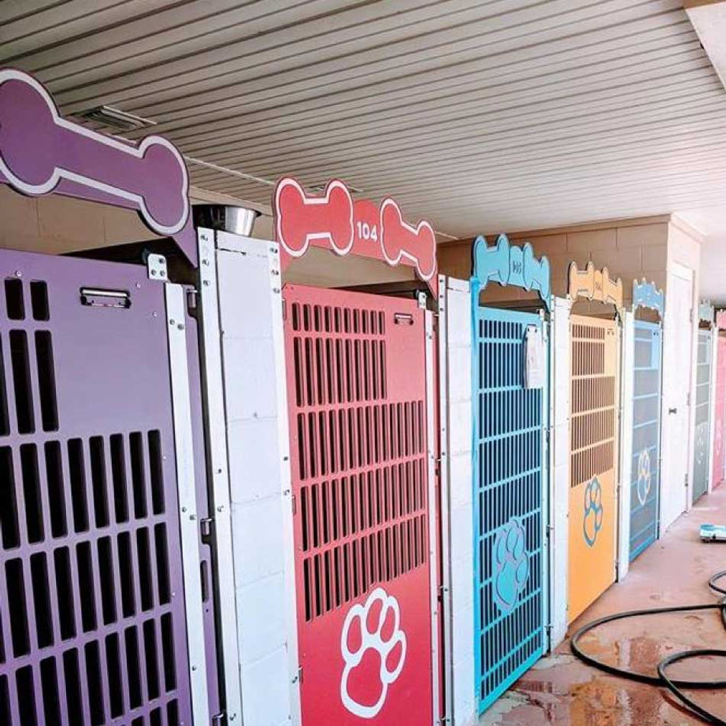 Colorful dog kennel gates at Mugus Pet Resort.