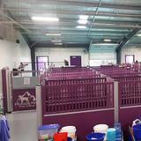 Pinnacle Pets' custom dog kennels .