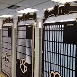 Black dog kennel gates for Animal Care Clinic North.