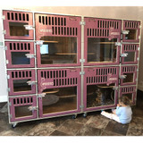 Cage bank unit, with custom gates for ApexExotics uses for breeding.