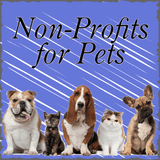 Non-Profits for Pets