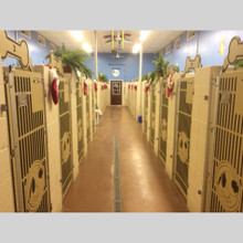 Large kennel suites with custom gates.