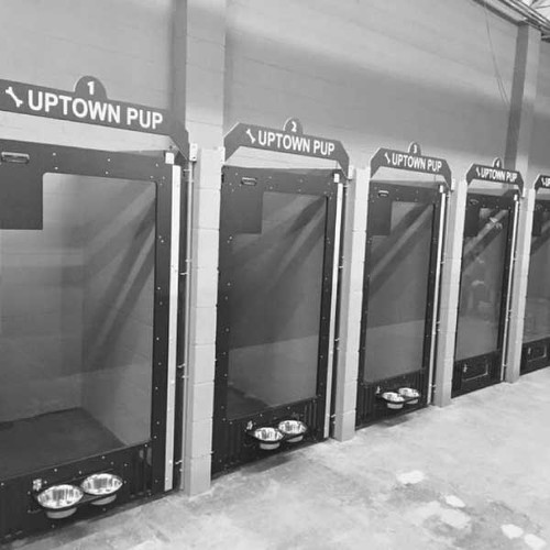 Uptown Pup's Gator Kennels gates in black.