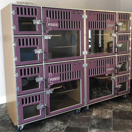 Cat-Hotel with custom gates for ApexExotics.
