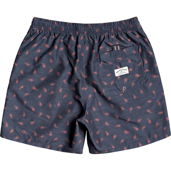 Quiksilver Threads & Fins Boardshorts - Back