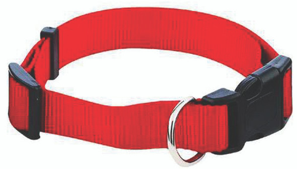 Single Dog Collar - Asst, 1x18-26""