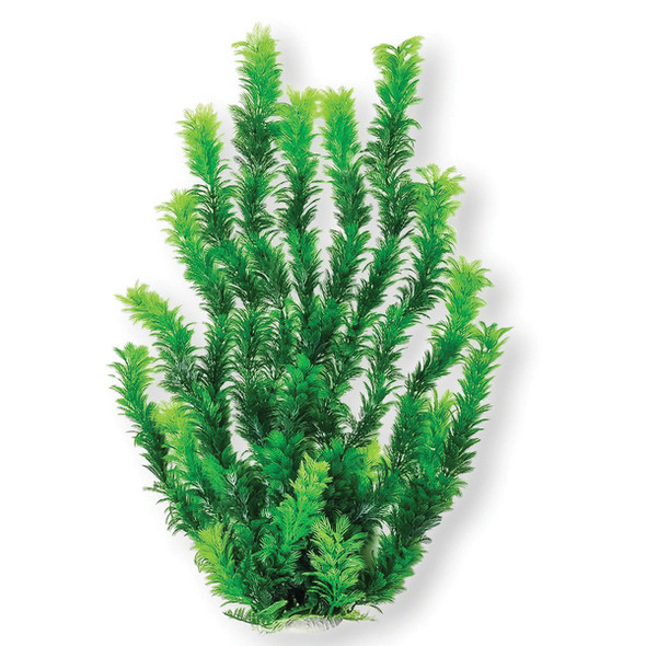 Aquatop Aquatic Supplies - Dark Green 24 Inch