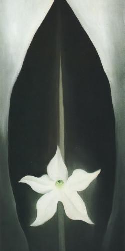 Nicotina by Georgia O Keeffe Print