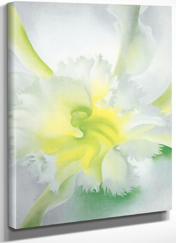 An Orchid by Georgia O Keeffe