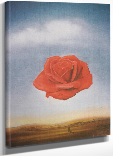 Meditative Rose 1959 by Salvador Dali