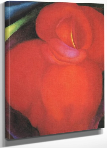 Red Flower by Georgia O Keeffe