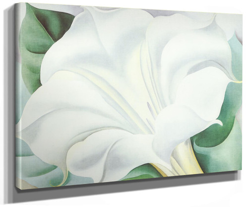 The White Trumpet Flower by Georgia O Keeffe