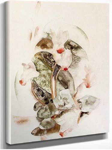 Cyclamen1 By Charles Demuth