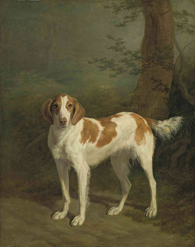 Dash A Setter In A Wooded Landscape By Jacques Laurent Agasse Art Reproduction from Wanford