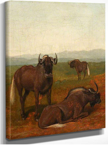Gnus By Jacques Laurent Agasse