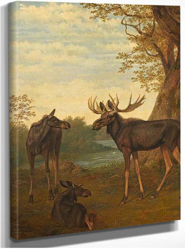 Moose By Jacques Laurent Agasse
