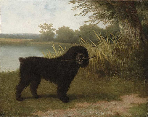 A Black Water Dog With A Stick By A Lake By Jacques Laurent Agasse
