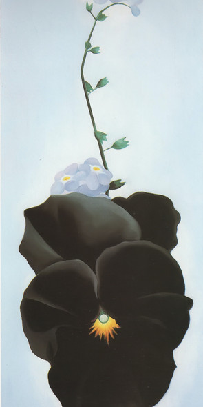 Black Pansy And Forget Me Not by Georgia O Keeffe Print