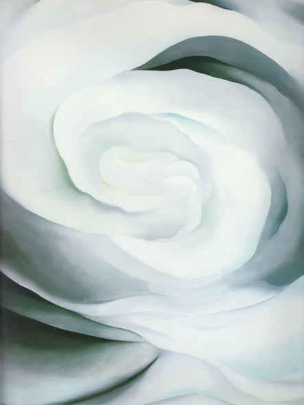 Abstraction White Rose No 2 by Georgia O Keeffe Print
