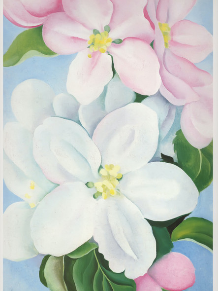 Apple Blossoms by Georgia O Keeffe Print