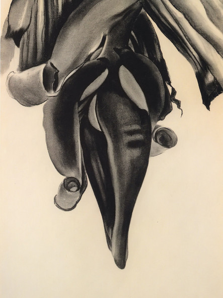 Banana Flower 1933 by Georgia O Keeffe Print