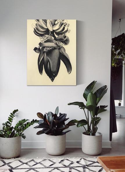 Banana Flower No 1 by Georgia O Keeffe