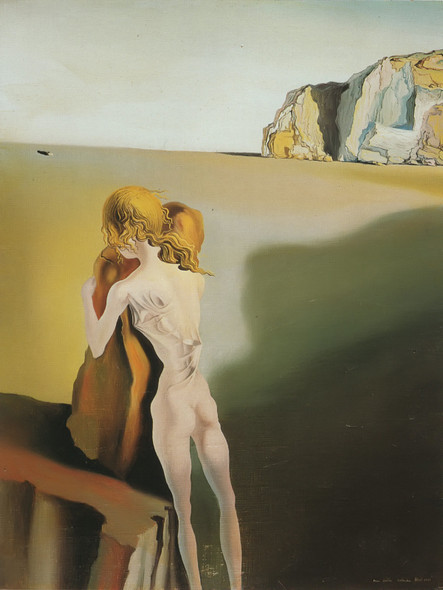Diurnal Illusion The Shadow Of A Grand Piano Approaching by Salvador Dali Print