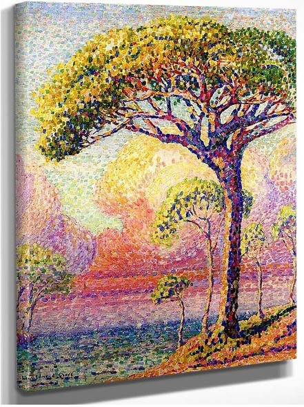 A Pine Tree By Henri Edmond Cross