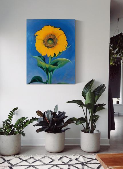 Sunflower 2 by Georgia O Keeffe
