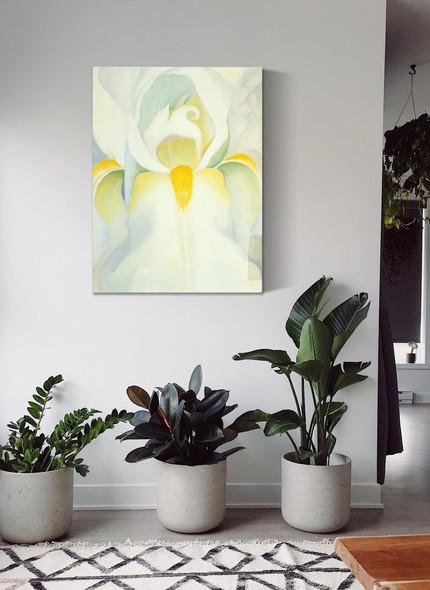 White Iris by Georgia O Keeffe
