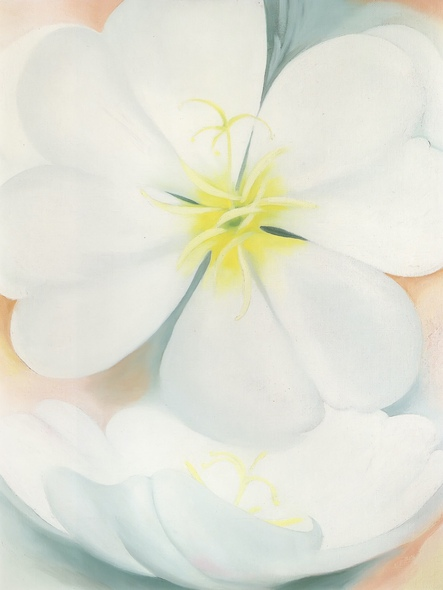 White Primrose by Georgia O Keeffe Print
