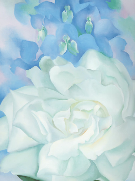White Rose With Larkspur No 2 by Georgia O Keeffe Print