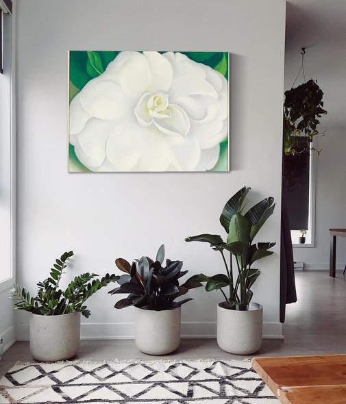 A White Camellia by Georgia O Keeffe