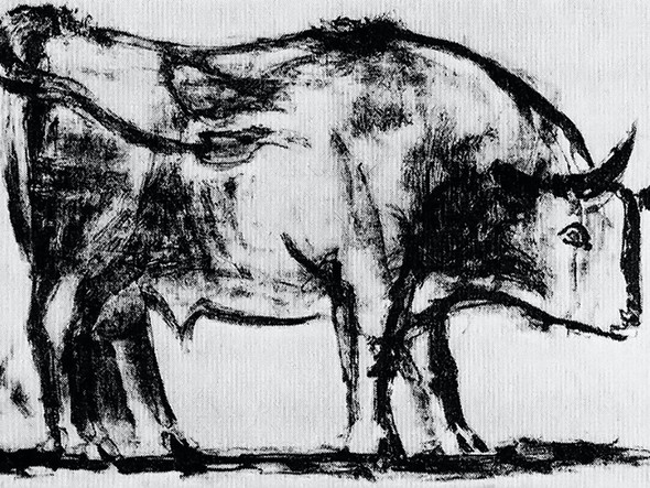 Bull (Plate I)museum Of Modern Art New York Usa by Picasso Print
