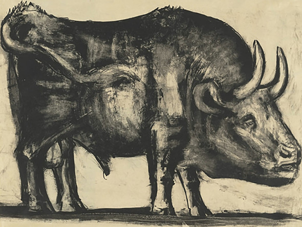 Bull (Plate Iii) 32x43 Museum Of Modern Art New York Usa by Picasso Print