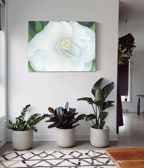 White Camellia by Georgia O Keeffe