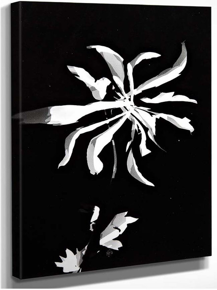 Changing Patterns By Laszlo Moholy Nagy