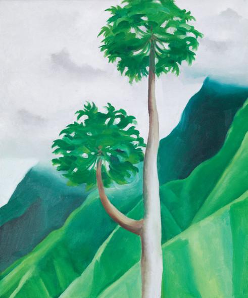 Papaya Tree Iao Valley By Georgia O Keeffe