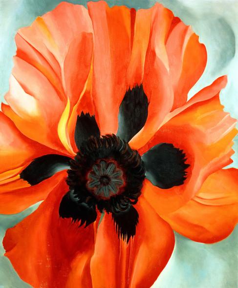 Red Poppy Vi By Georgia O Keeffe