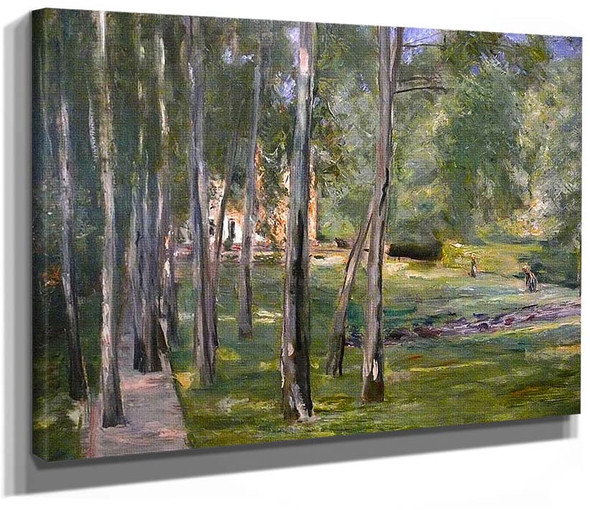 Birch Grow By Max Liebermann