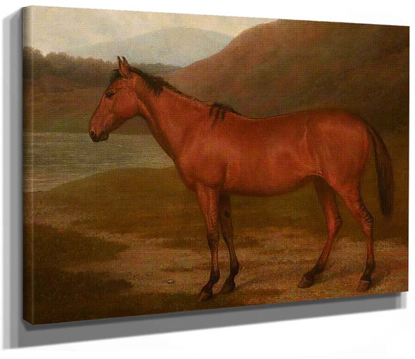 Foal Of Mare And Quagga By Jacques Laurent Agasse