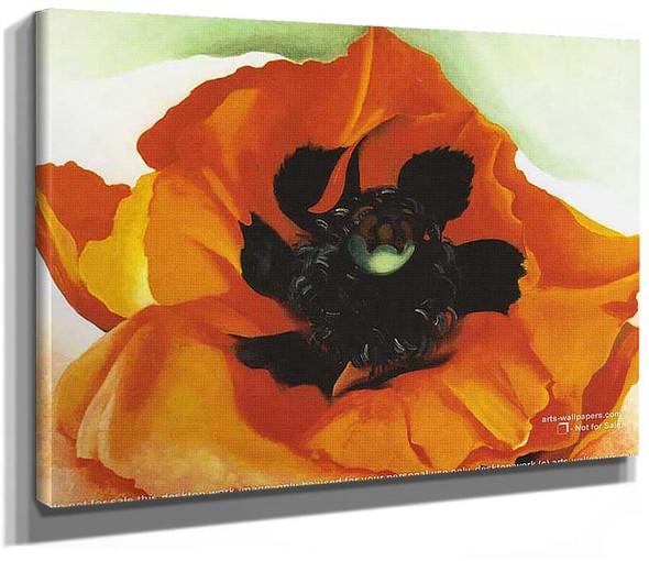 Poppy 4 By Georgia O Keeffe