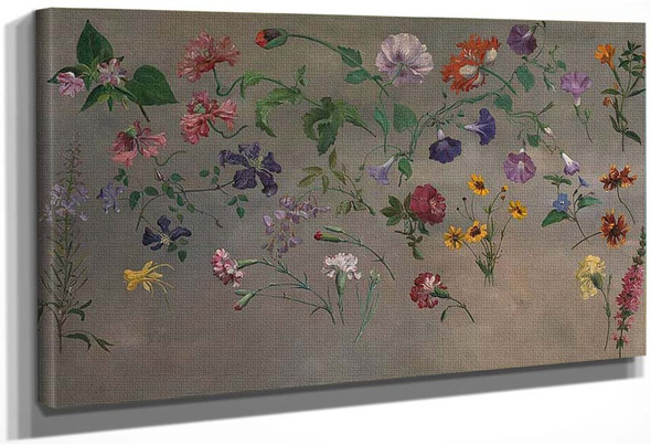 Studies Of Flowers By Jacques Laurent Agasse