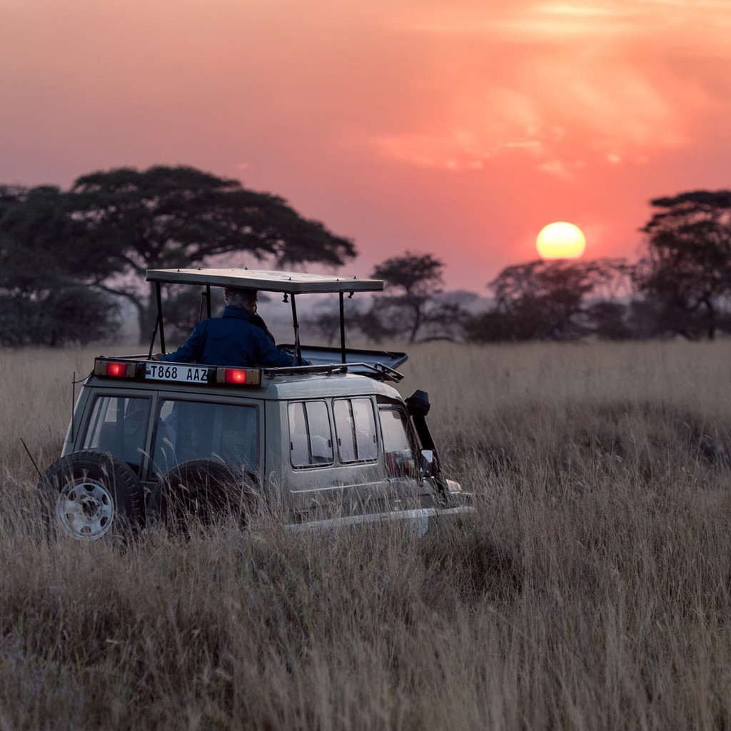 Warrior Poet Society: 10-Day Adventure to Africa January 14 – 23 2021