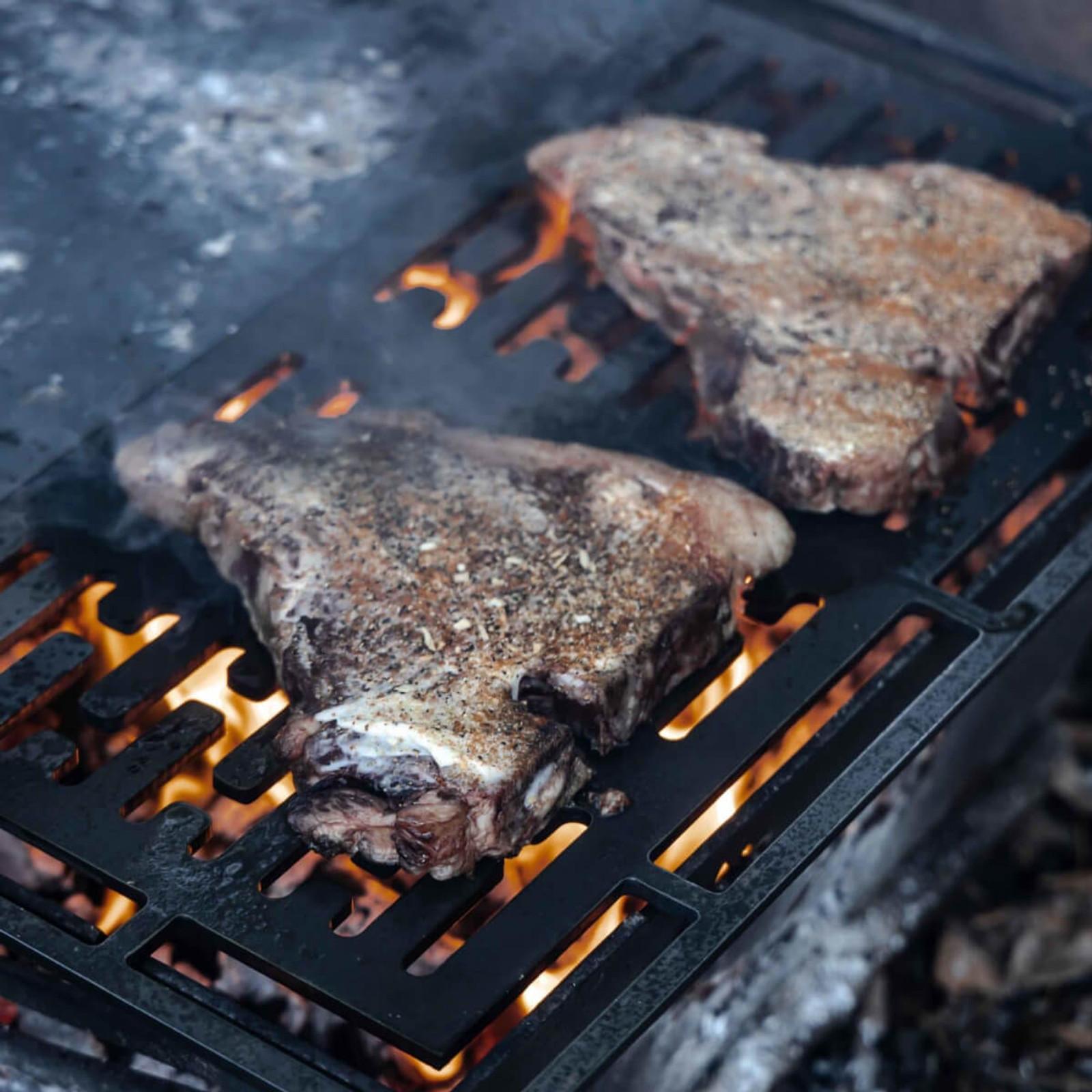 WPS Firebox Cooking Grate